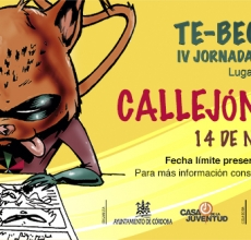 CALLEJÓN DEL ARTISTA